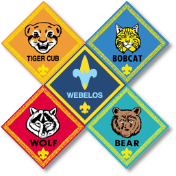 Lee's Summit Cub Scout Pack 323